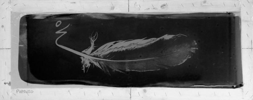 Desobediencia: historia de una pluma