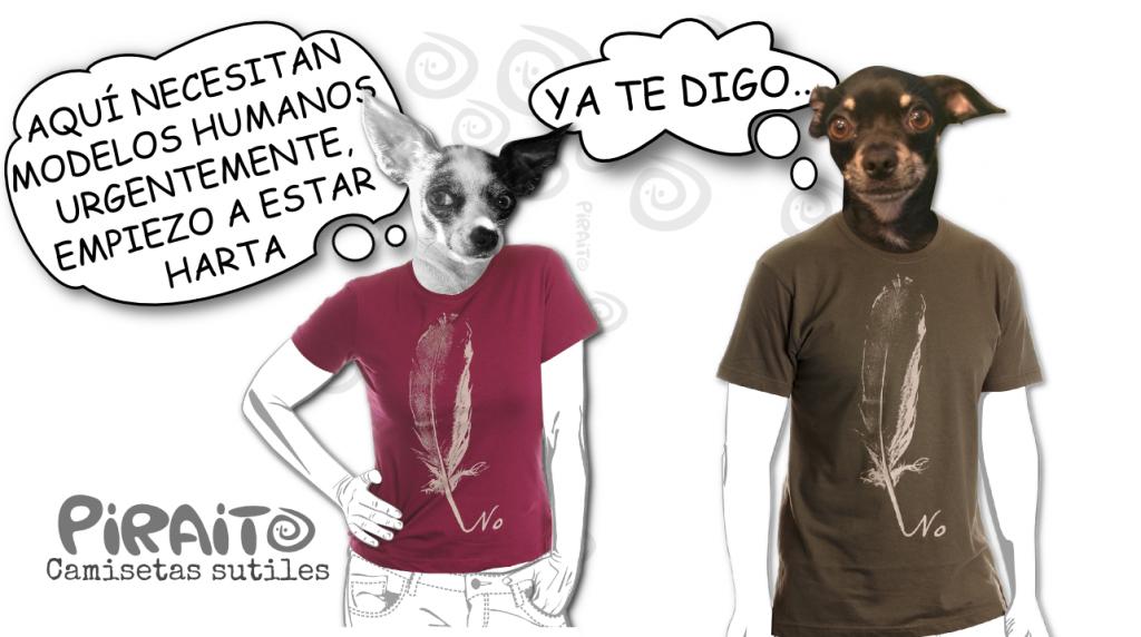 piraito-banner-camiseta-desobediencia