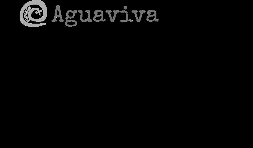 Ilustración para camiseta Aguaviva de Piraito
